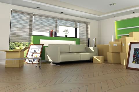 Moving boxes in a modern green room